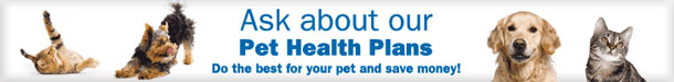 Ask about our pet healthcare plans